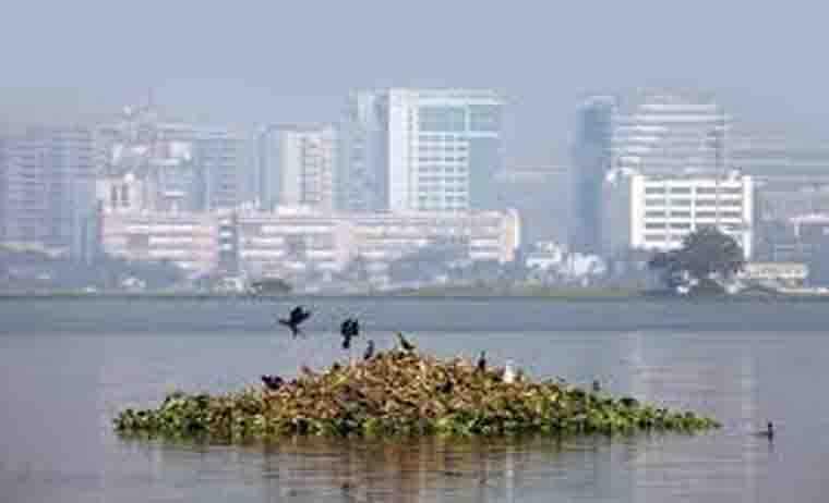 Escorts Service In Salt Lake Kolkata